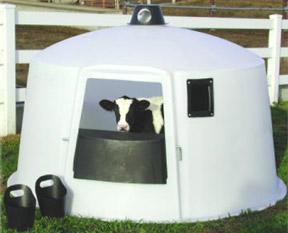 PolyDome Calf Nursery