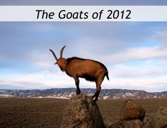 Nanny Goats in Panties 2012 calendar